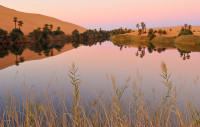 Landscape-13_LIB_ACA_110107_25