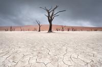 Namibia-13_NAM_SOS110615_8874