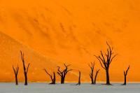 Namibia-26_NAM_SOS_110612_4375