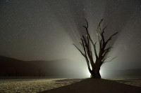 Night-34_NAM_120620_7987