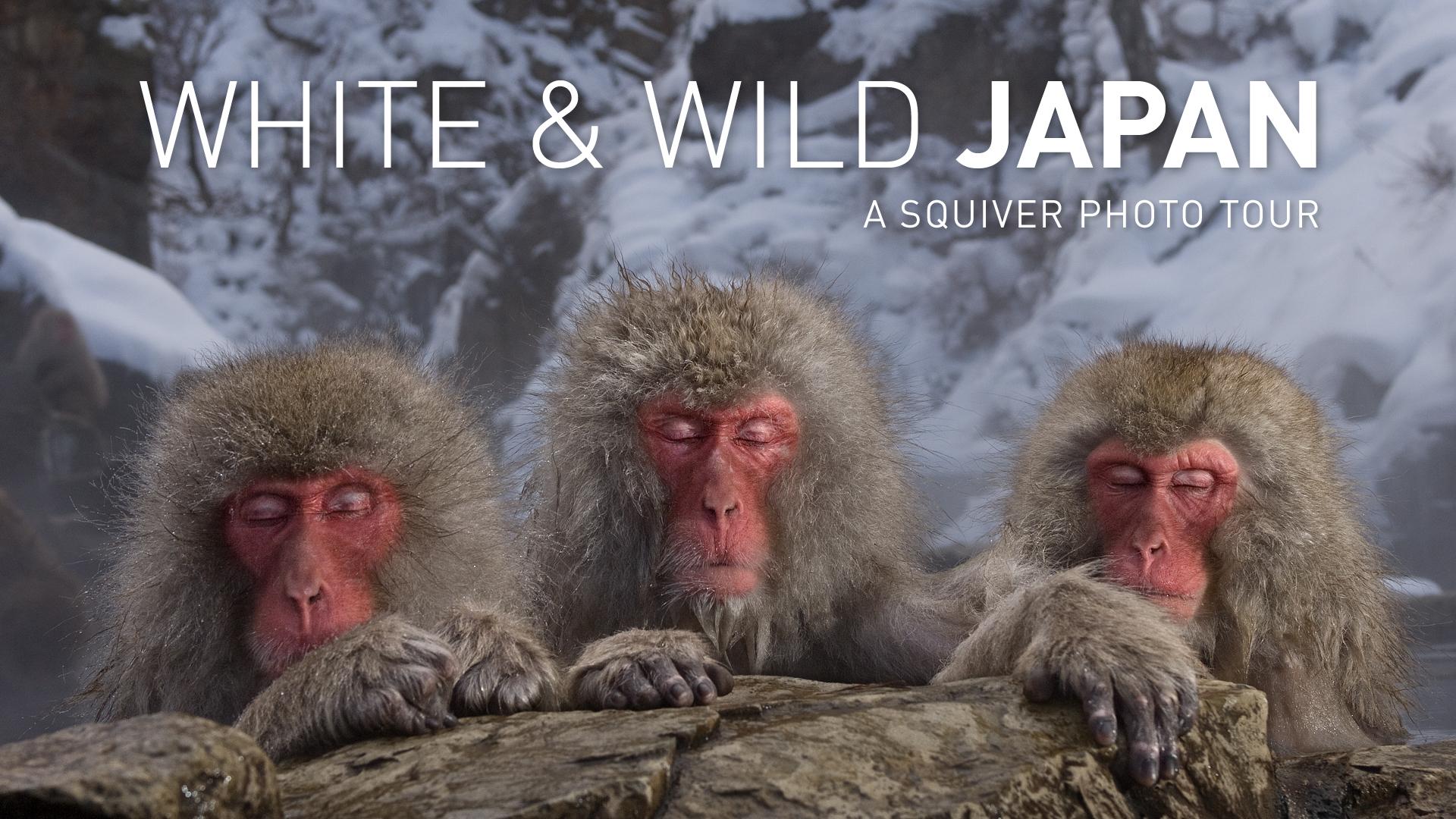 Video-5_Japan