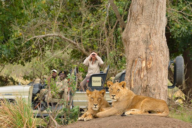 On safari in Zambia.