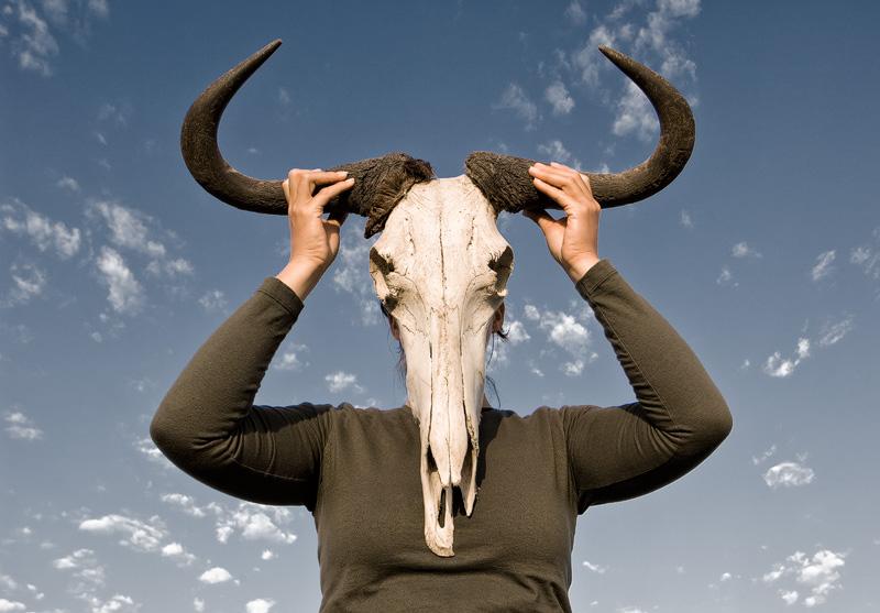 Daan-Wildebeest